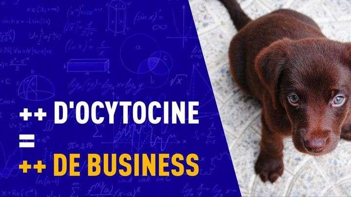 RÉUSSIR SON BUSINESS GRÂCE À L'OCYTOCINE